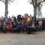 Sázení stromů a keřů v okolí školy