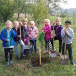 Náš strom