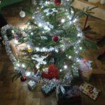 Vánoční besídka a vycházka